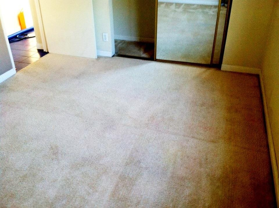 Most Effective Carpet Cleaning D.I.Y. Tips in Corona Carpet Cleaners