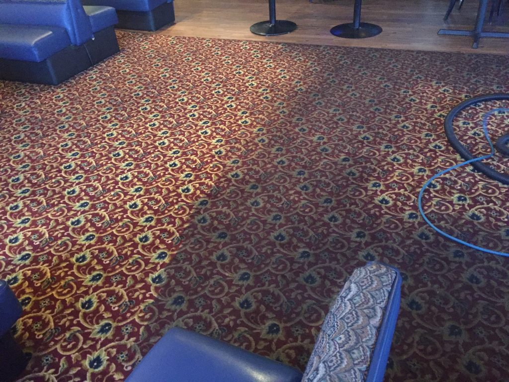 Low Cost Professional Carpet Cleaning Service Corona Carpet Cleaners Near Me