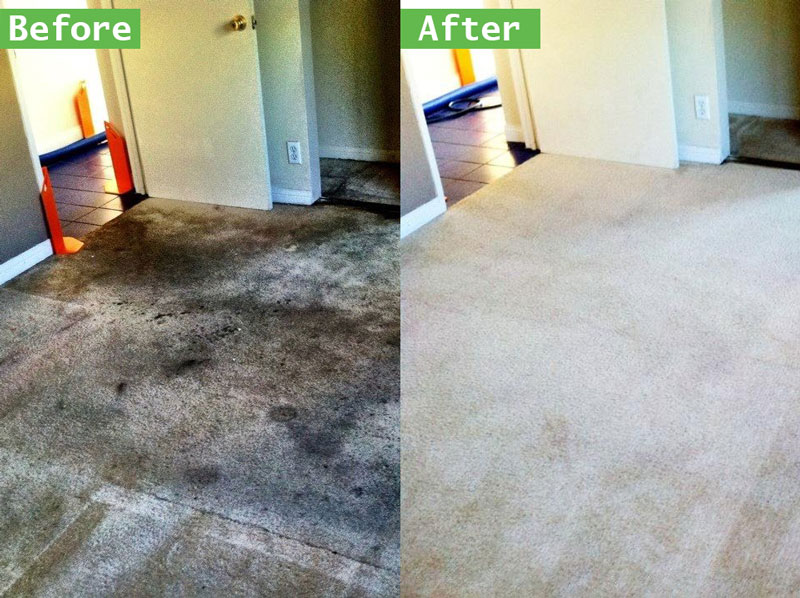 Cheap-Carpet-Cleaning-Service-[location]-Carpet-Cleaners
