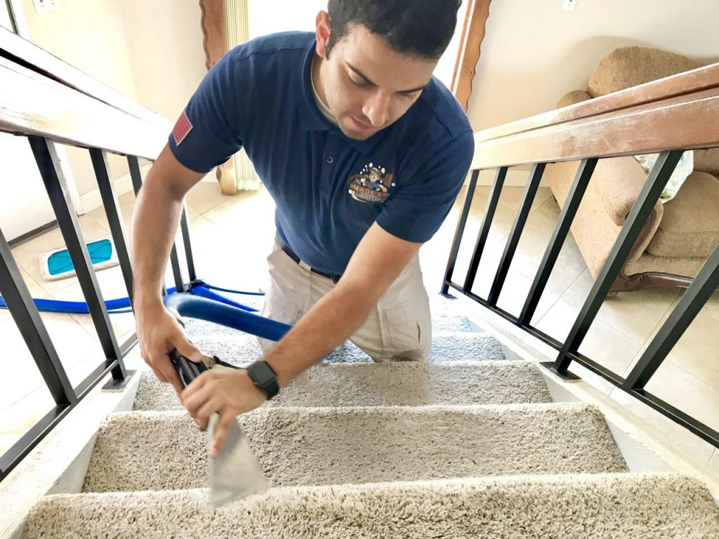 Carpet Cleaning Services in Corona County